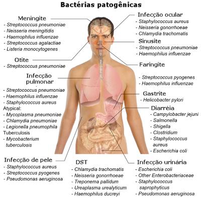 Infecções bacterianas