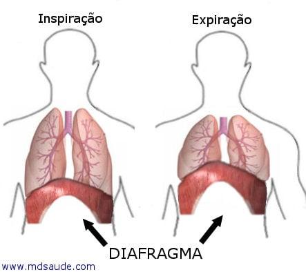 diafragma - Soluço
