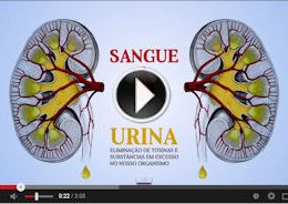 Doença renal vídeo