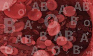 Grupos Sanguíneos – Sistema ABO y Factor Rh 1