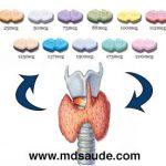 LEVOTIROXINA (Puran T4) – Indicações e efeitos colaterais