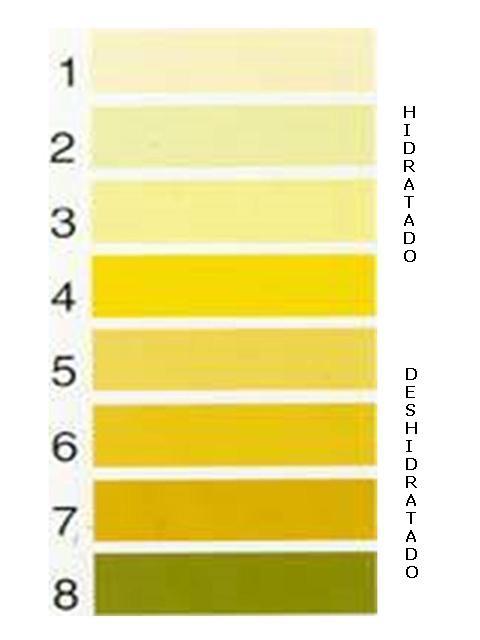 Orina color