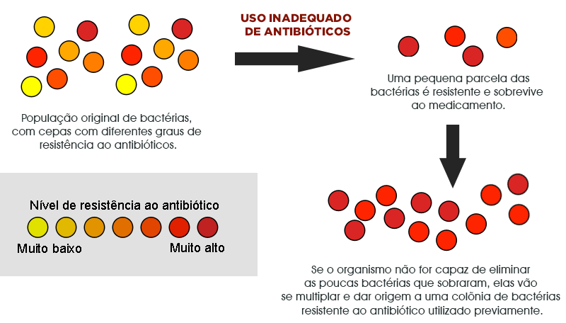 Mecanismo de resistência aos antibióticos