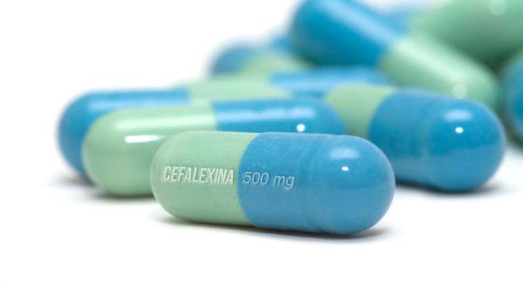 Cefalexina