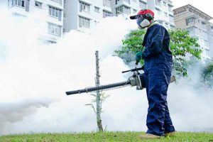 Dengue – Sintomas, complicações e tratamento