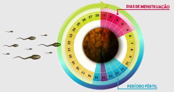 Engravidar menstruada