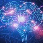 EPILEPSIA E CRISE CONVULSIVA – Sintomas e Tratamento
