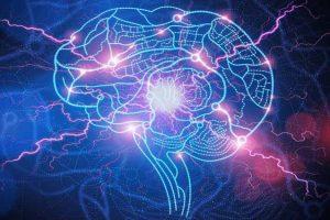 Epilepsia, crise convulsiva e estado de mal epiléptico