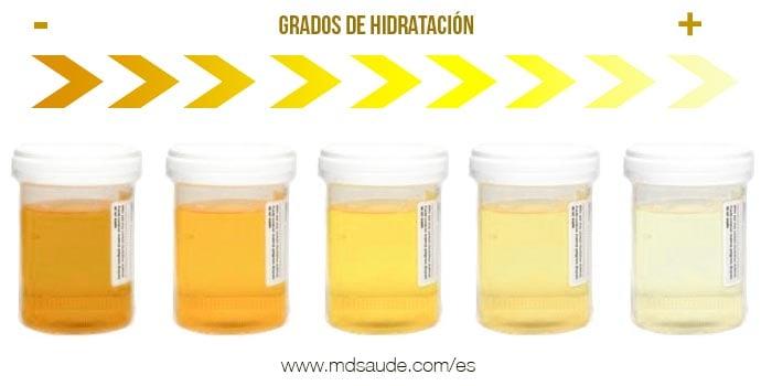 Grados de hidratación