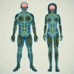 SÍNDROME DE GUILLAIN-BARRÉ – Sintomas e Tratamento