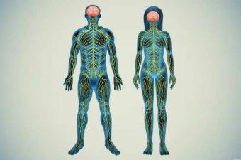 SÍNDROME DE GUILLAIN-BARRÉ – Síntomas y Tratamiento