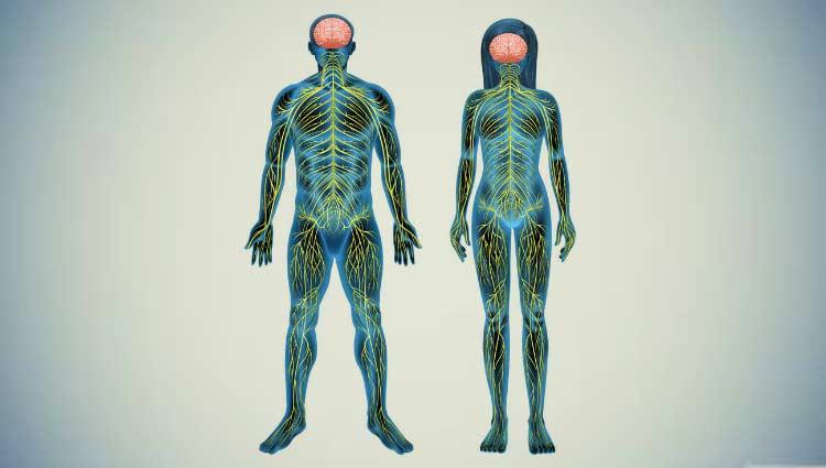 A hidroterapia na reabilitação de pacientes com doença de parkinson uma alternativa viável 8