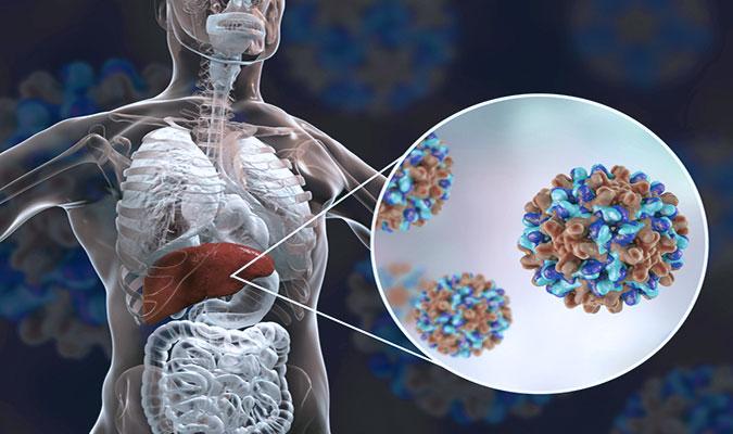 Vírus da hepatite B (HBV)