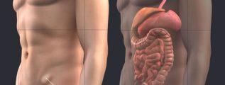 HÉRNIA INGUINAL – Causas, Sintomas e Tratamento