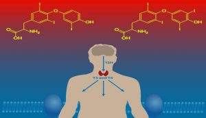 hipotireoidismo subclinico