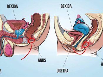 VÍDEO: Por que as mulheres têm mais infecção urinária que os homens?
