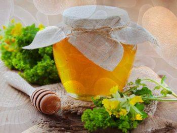BOTULISMO – Causas, Sintomas e Tratamento