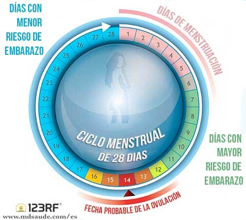 Tener relaciones sexuales en menstruacion puede quedar embarazada