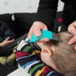 PIOJOS – Síntomas, Transmisión y Tratamiento