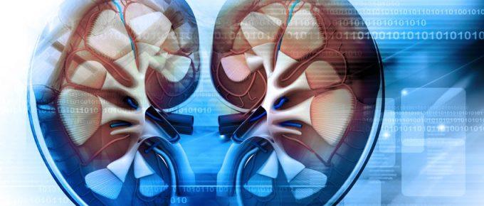 Sintomas dos rins