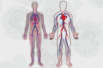 GRANULOMATOSIS DE WEGENER – Causas, síntomas y tratamiento