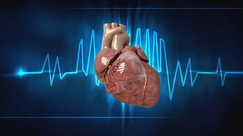 paro cardiaco fulminante wikipedia