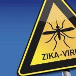 FEBRE ZIKA – Causas, Sintomas, Microcefalia e Tratamento